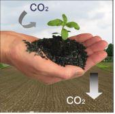Terra Preta Anwendung in Garten und Landwirtschaft @ Waldkirch